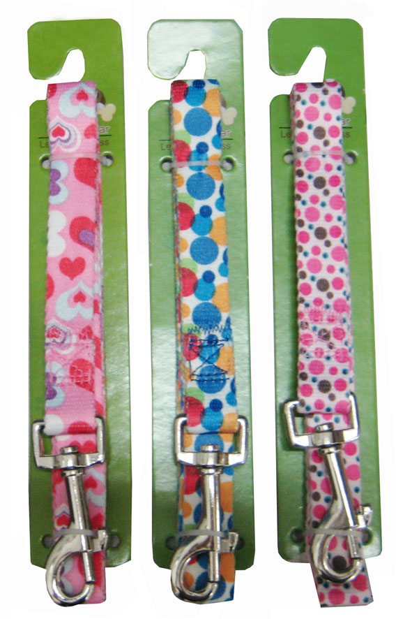 Leash & Collar Lcq0025